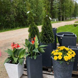Ritun_puutarha_kesäkukka_istutuksia_ideoita_kukkaistutuksiin18