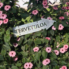 Ritun_puutarha_kesäkukka_istutuksia_ideoita_kukkaistutuksiin40